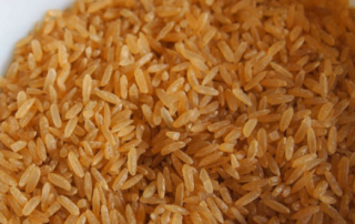 is brown rice good for dogs